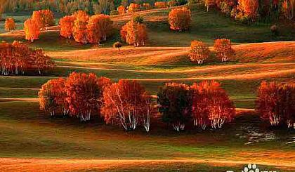 互动吧-10.2~4日醉美在秋天的童话里,乌兰布统三日游