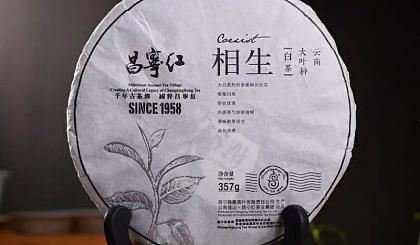 互动吧-200年树龄古树白茶   品鉴