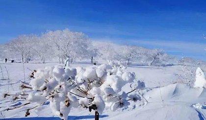 互动吧-【元旦3天|友行友派】雪乡雪谷,打雪仗爬雪山一起过大年!