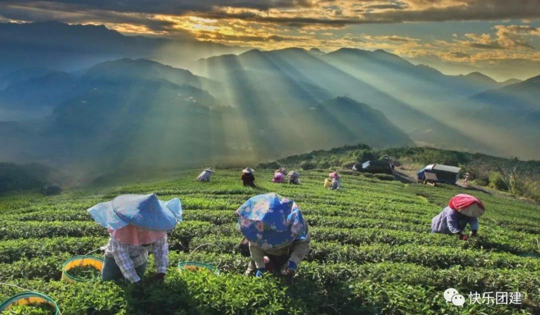 深圳快乐团建:红茶谷茶文化+浈阳峡文化小镇两天一夜团建之旅